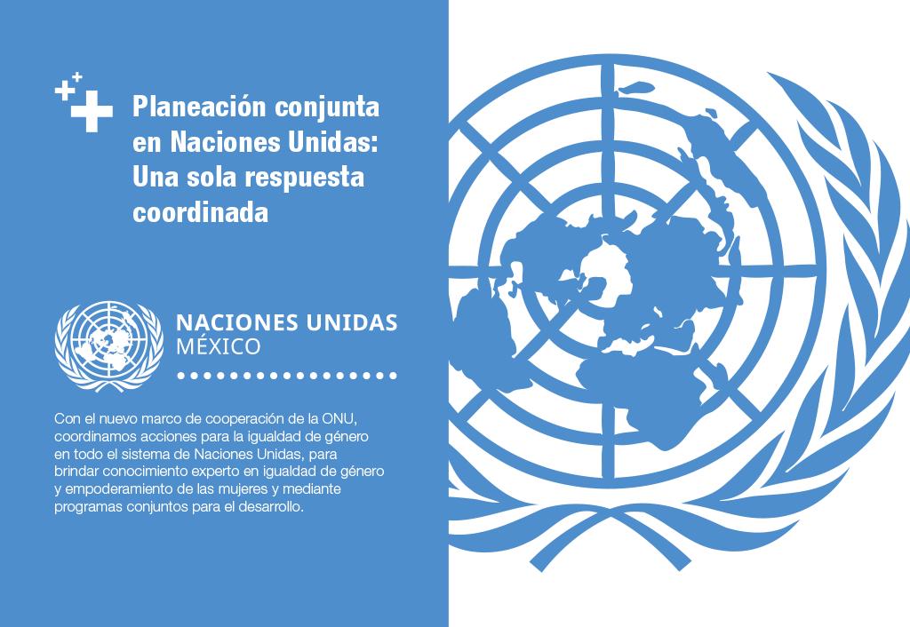 Planeación conjunta en Naciones Unidas: Una sola respuesta coordinada